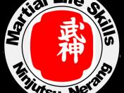 MLS Logo 2016 Clr png