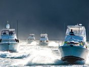 Gold Coast Offshore Fishing Charters