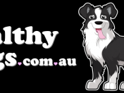 Healthy-Dogs-Logo-1