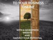website advertising 1