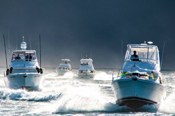The Best Gold Coast Fishing Charters