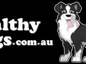 Healthy-Dogs-Logo-1