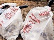 1_1_asbestos_bag_craig_abraham_729-420x0